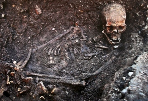 LEICESTER, ENGLAND - FEBRUARY 04:  A television screen displays the skeletal remains of what is believed to be King Richard III during a press conference at Leicester University on February 4, 2013 in Leicester, England. The University of Leicester has been carrying out scientific investigations on remains found in a car park to find out whether they are those of King Richard III since last September, when the skeleton was discovered in the foundations of Greyfriars Church, Leicester.  (Photo by Dan Kitwood/Getty Images)